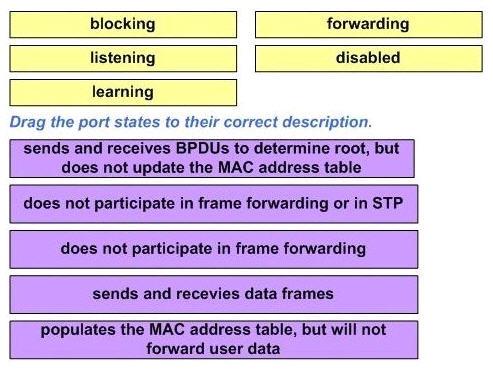 STP_process