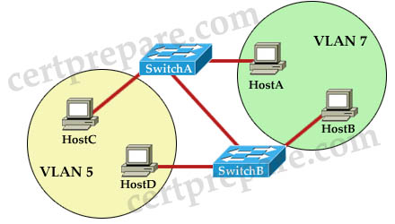 switchport_mode_trunk.jpg