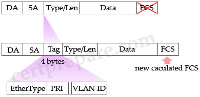 802_1q_frame_structure.jpg