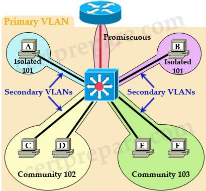PVLAN_Primary_VLAN_Secondary_VLAN.jpg